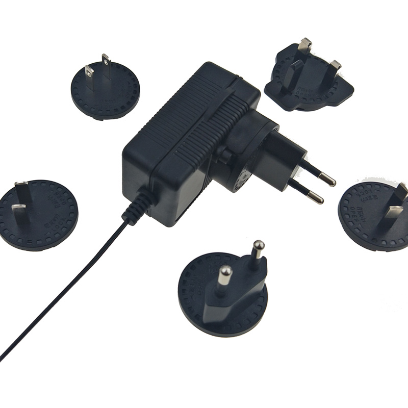 19V 1A Interchangeable Plug AC DC Power Adapter